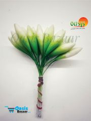 Tulip Pollens White In Color Pack Of Single Bunch.