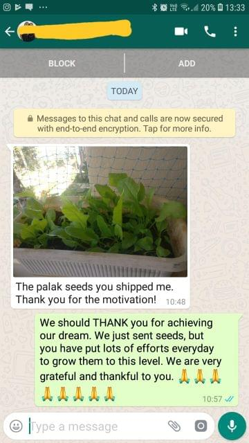 The palak seeds your shipped me. Thank you for the motivation!. - Reviewed on 04-Jan-2019