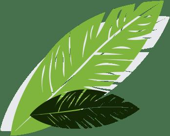 banner-leaf-left