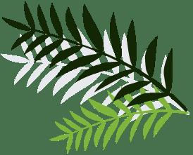 banner-leaf-right