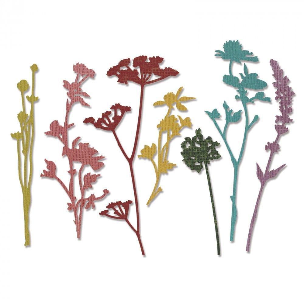 Sizzix Thinlits Die Set 7PK - Wildflowers- 661190