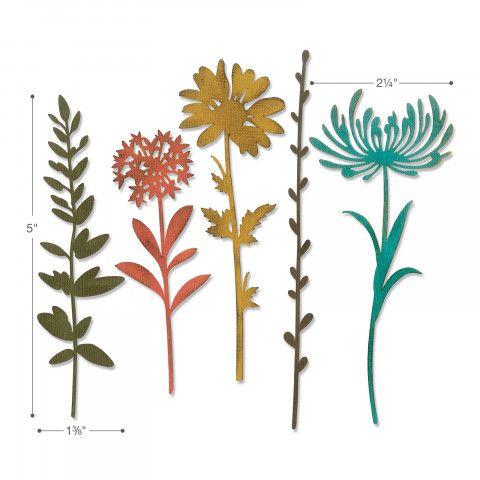 Thinlits Die Set 5PK - Wildflower Stems #1-664163