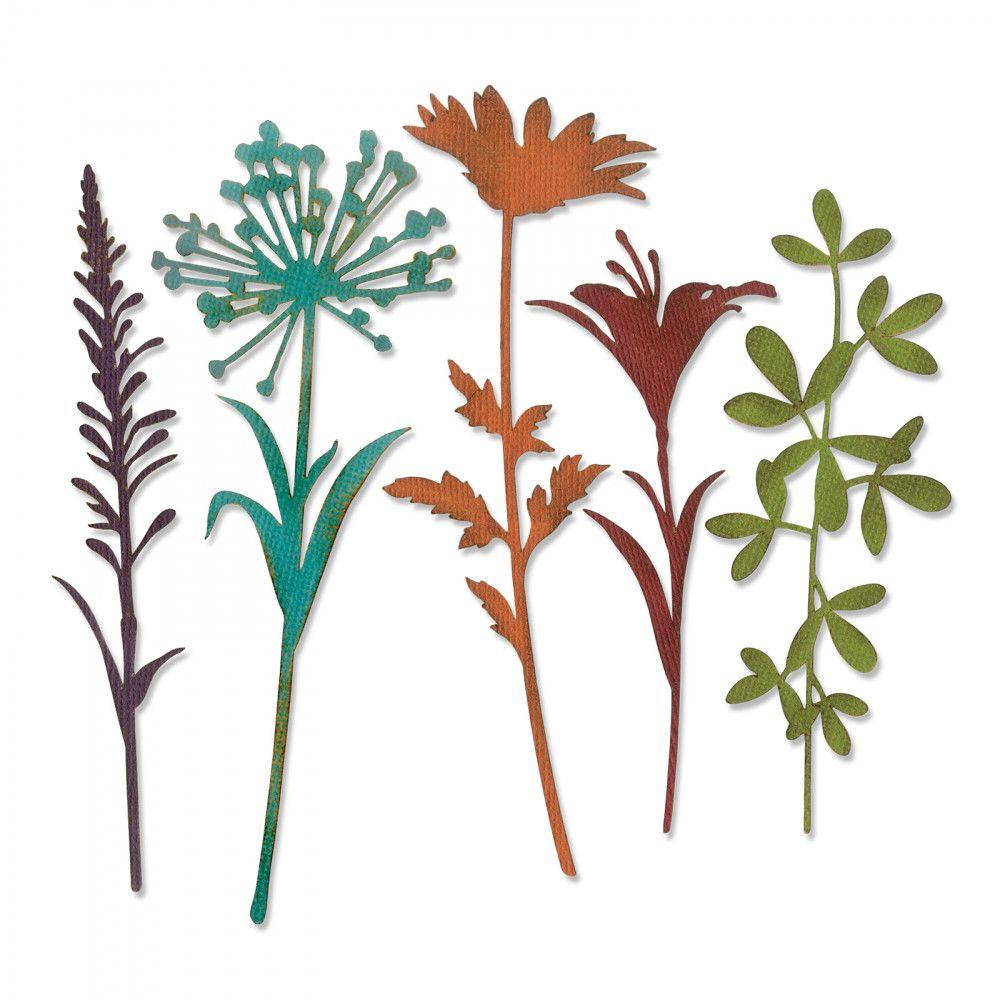 Thinlits Die Set 5PK - Wildflower Stems #2-664164