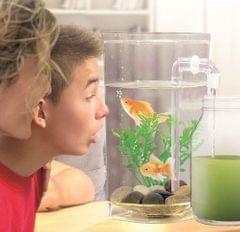 Fish Wonder Easy Clean Gravity Effect Freshwater Aquarium Small Clear Fish Tank