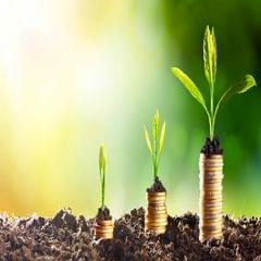 Legacy and Wealth Creation