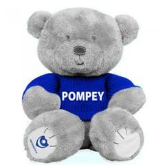 Offizieller Liebe-und Umarmungs-Bär Portsmouth FC