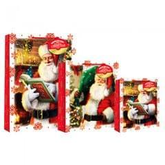 Eurowrap Weihnachtliche Geschenktüte mit Weihnachtsmann-Motiv