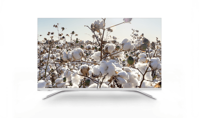 "43"" Designer series 4K LCD TV"