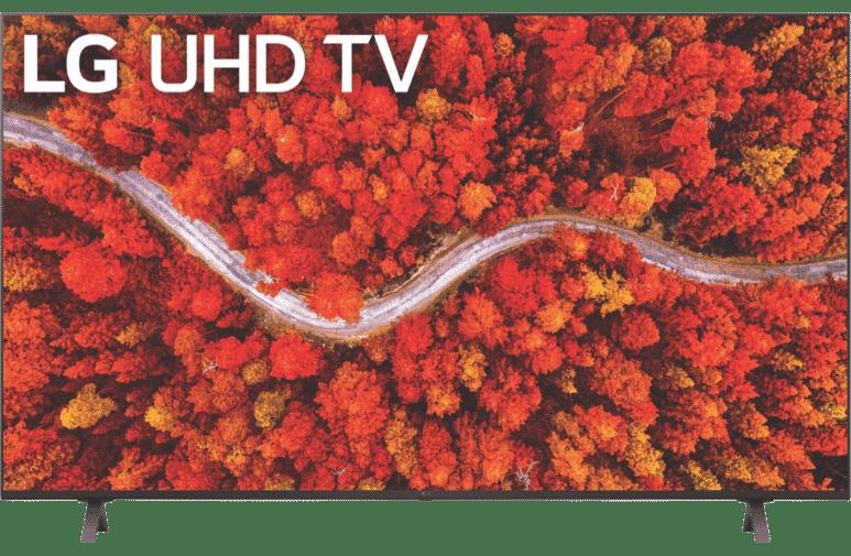 "65"" AI 4K ThinQ TM100 Smart TV (2021)"