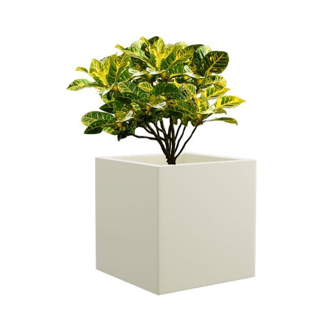 Cream White BAR 10 Inches Square Planter