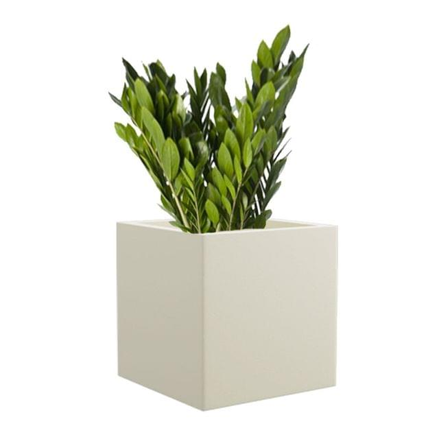 Cream White BAR 12 Inches Square Planter