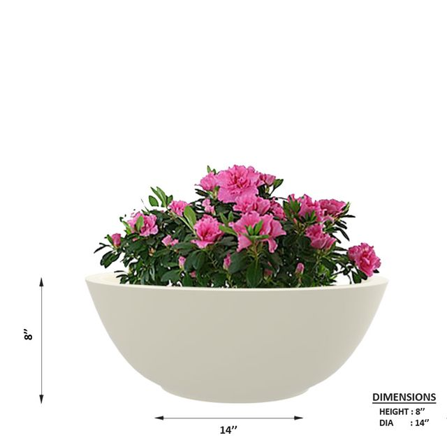 Creame White 14 Inches KTR Small Planter