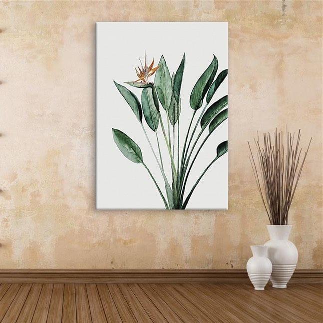 Beautiful Plant Framed Canvas Print