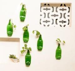 Chappat Planters - Set of 6