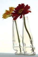 2 Bottle Vase
