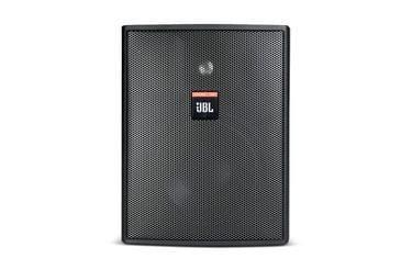 JBL | Compact Indoor Outdoor Loudspeaker | C25AV-LS