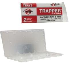 BELL | Trapper Rat Display | Pack of 2 | BELL0011-TR2724