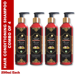 Aegte Natural Hair Conditioning Shampoo Enriched with Red Onion, Fenugreek Seeds, Kalonji & Amla, 250 ml Each- Pack of 4