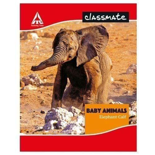 CLASSMATE - HORIZONTAL MATHS NOTEBOOK - KING SIZE - 200 PAGES