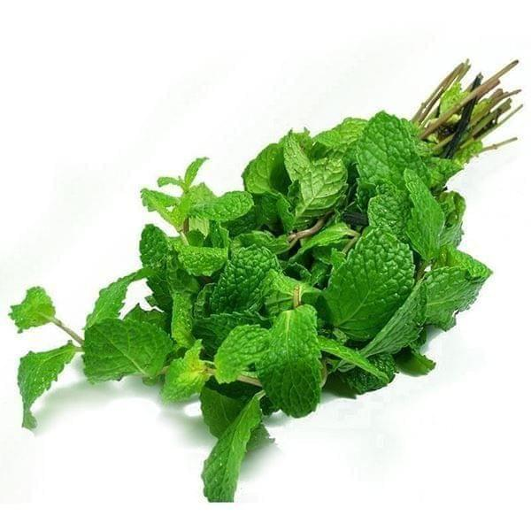 MINT LEAF - 1 BUNCH