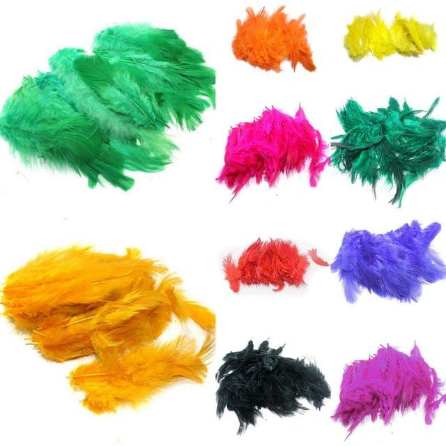 250 Pcs Jewellery Making Feather Multicolors Combo 25 Pcs Each Color