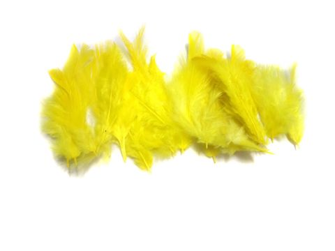 100 Jewellery Making Feather Yellow