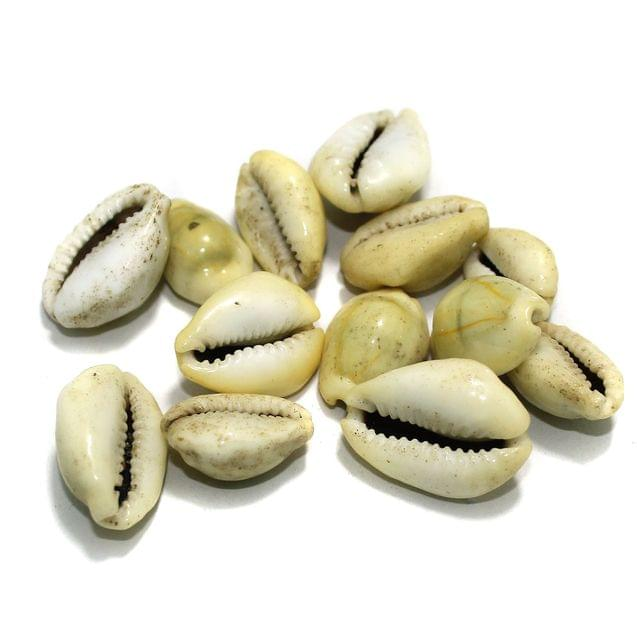 Cowrie Shell Beads Green Assorted Size , Pack Of 100 Pcs