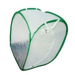 Praying Mantis Stick Insect Butterfly Cylindrical Pop-up Cage Mesh L White
