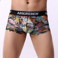 Mens Sexy Sheer Mesh Net Underwear Boxer Briefs Flower Underpants XL 3