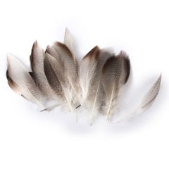 WHOLESALE 9-13cm Duck Feathers for PARTY MASK MAKING 20PCS
