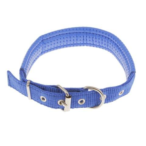 Soft Foam Comfortable Durable Use Adjustable Padded Nylon Pet Puppy Dog Basic Collar Safety Neck Strap Blue L