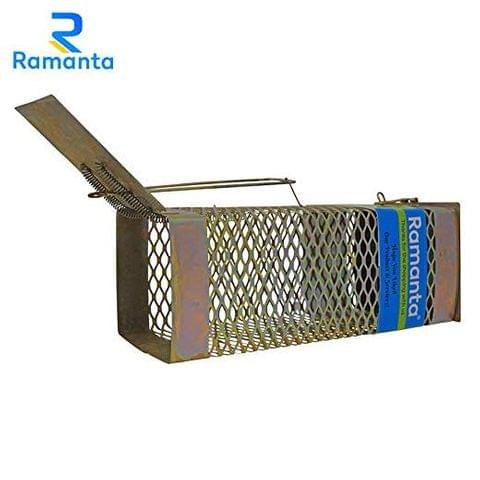 Ramanta 1 PC Big Iron Rat/Mouse/Rodent Trap Cage (26.5 cm X 10 cm X 11 cm)